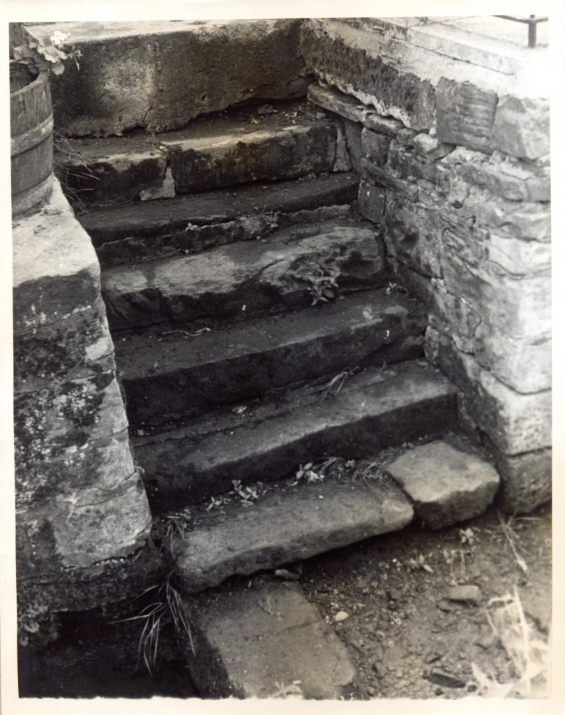 Steps to beck, Old Bay Horse